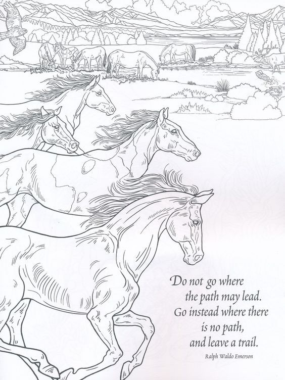 Pin By Lizwattage22 On Coloring Horses Horse Coloring Pages Coloring Books Animal Coloring Pages