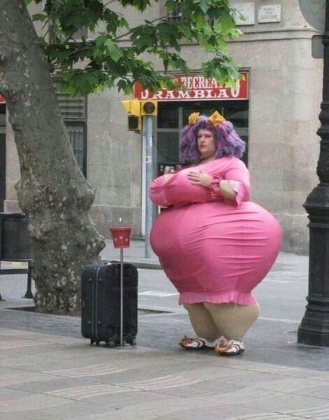 Картинки про жирных людей прикольные