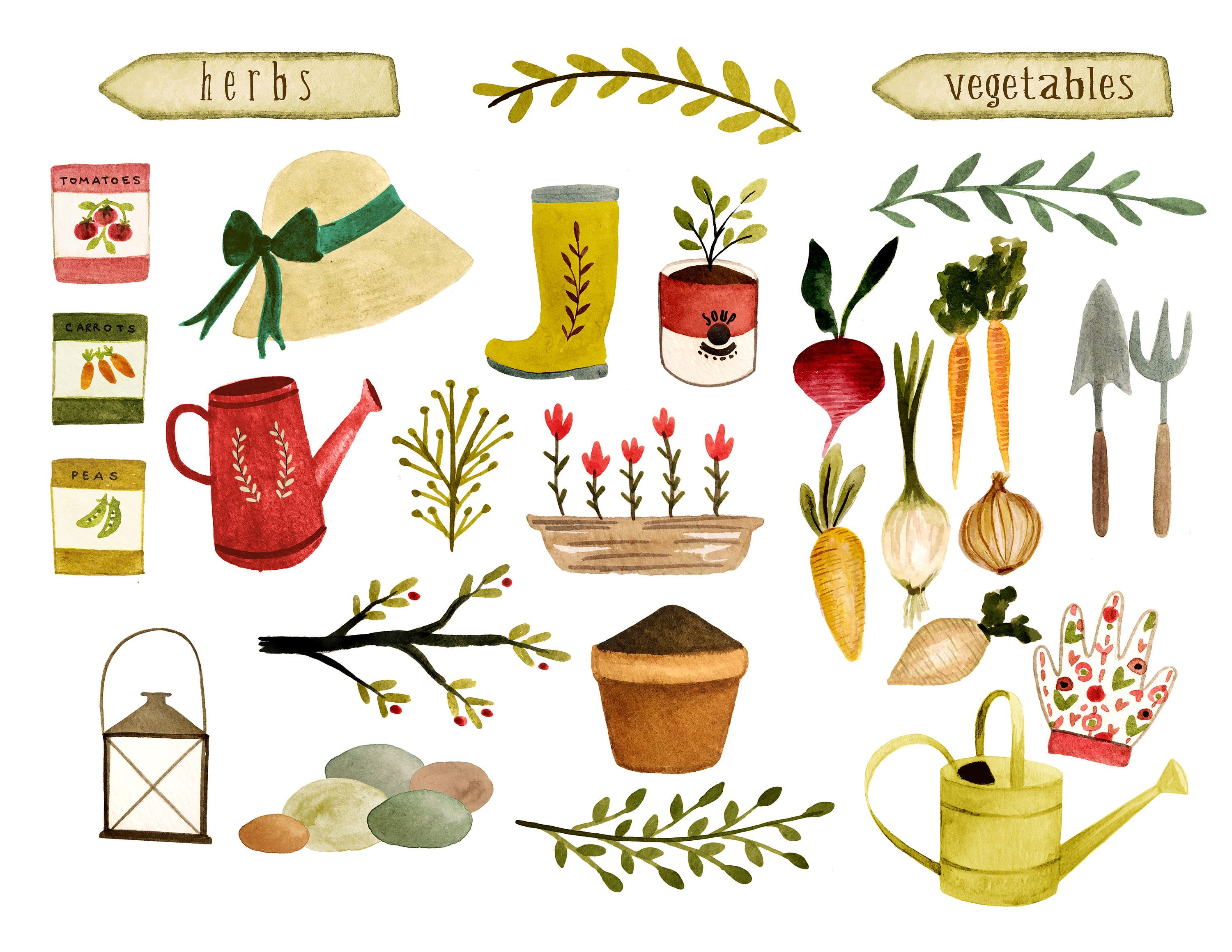 Gardening Clipart Vegetables Clipart Farm Clipart Watercolor