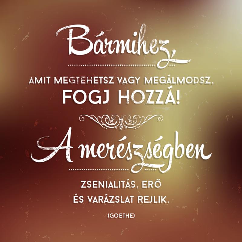 """oravecz nóra idézetek képekkel Képtalálat a következőre: """"oravecz nóra idézetek motivacio"""
