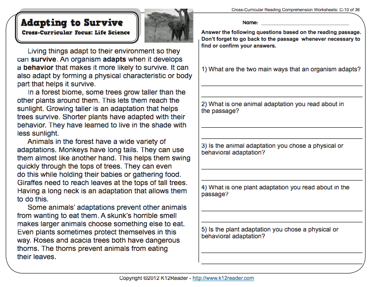 Passage And Comprehension Adaptations Reading