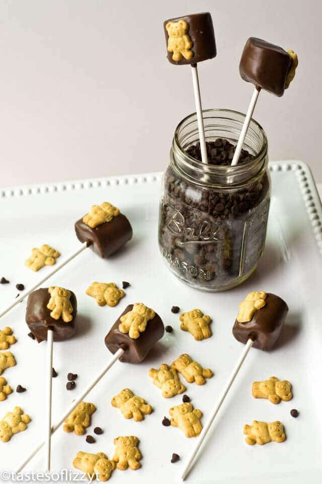 Teddy Graham S'more Pops {Easy, fun edible craft for kids}