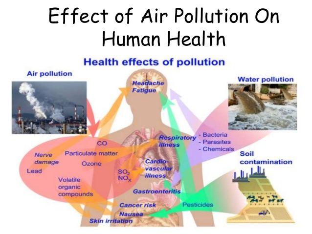 Global Platform On Air Quality And Health Airpurifiers