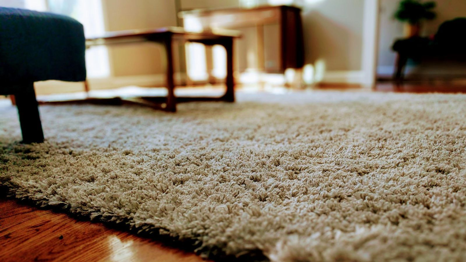 How To Rid Your Carpet Of Tough Stains Stain Remover