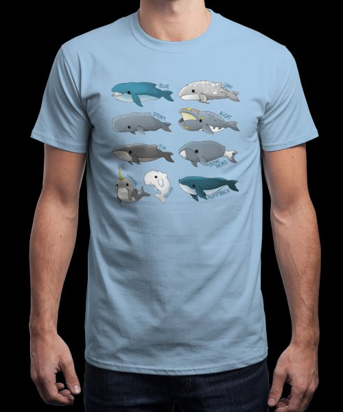 """""""Types of Whales"""" is today's £9/€11/$12 tee for 24 hours only on Pin this… 