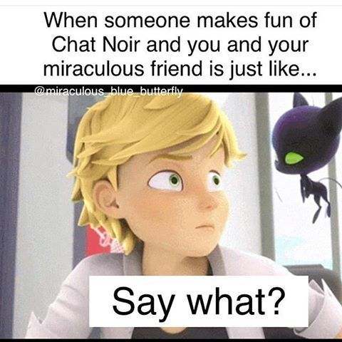 4358896a3b0550eb0326fdb5f05dafc3 miraculous ladybug memes and quotes miraculous, fanfiction and wattpad