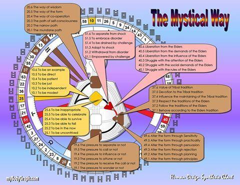 57 Human Design Ideas Human Design Human Design System Human