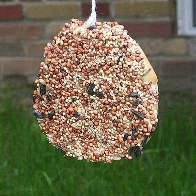 Bagel Peanut Butter Birdseed Bird Feeder Homemade Bird Feeders