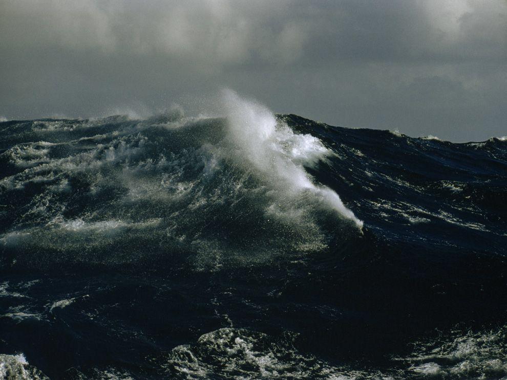 букеты, океан в шторм фото вытерпела