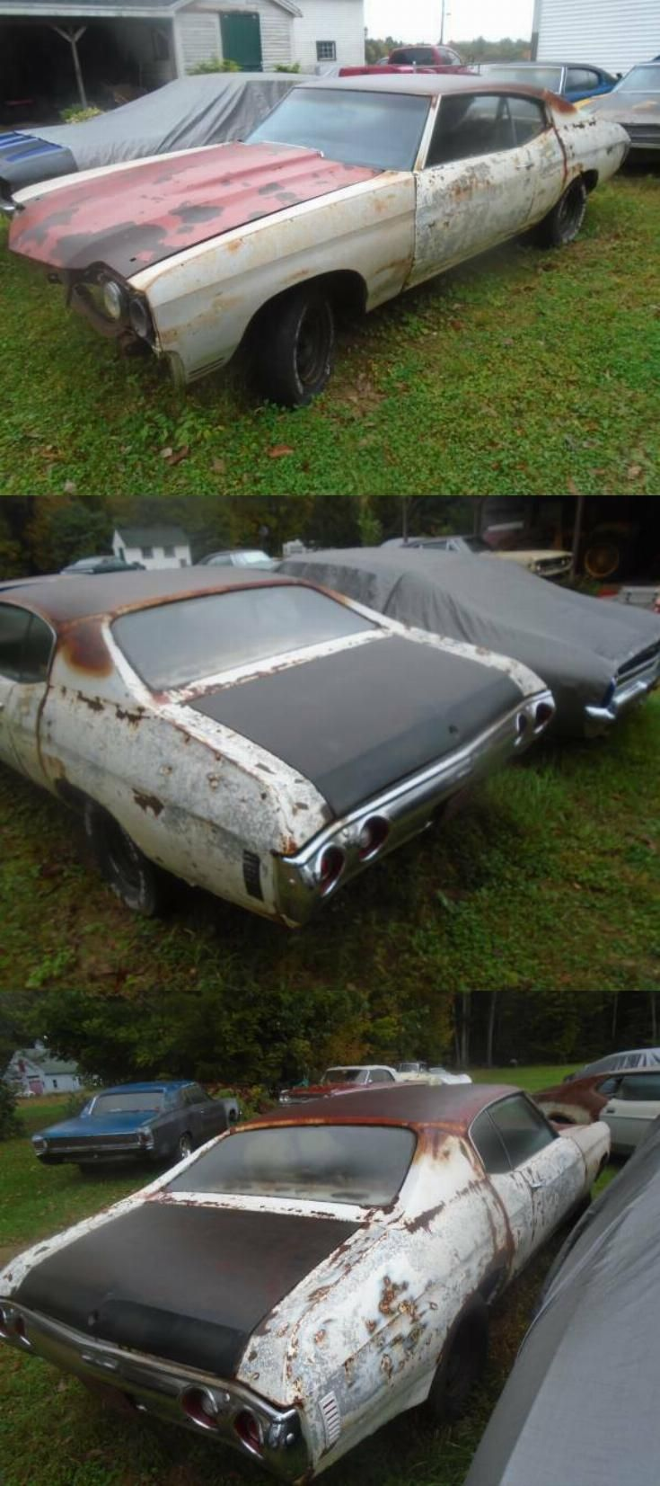 Rare Canadian Built 1970 Chevrolet Chevelle Project Project Cars