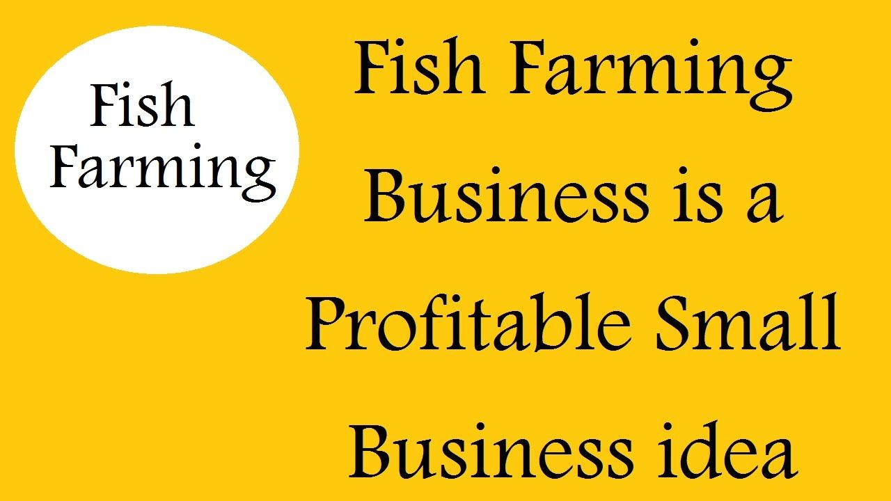 Fish Farming Business is a Profitable Small Buisness idea