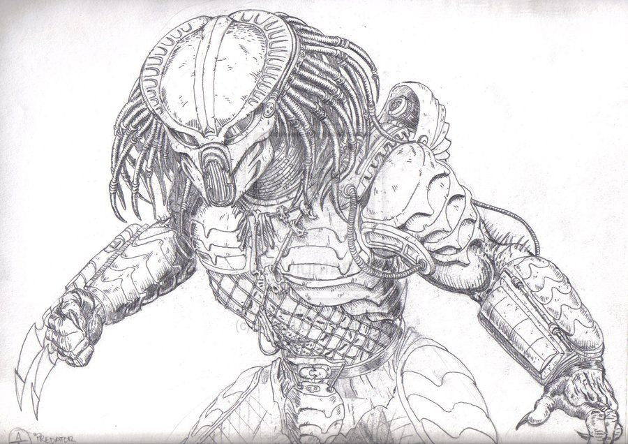 Alien vs Predator Coloring Pages | Alien Predator Coloring Pages ...