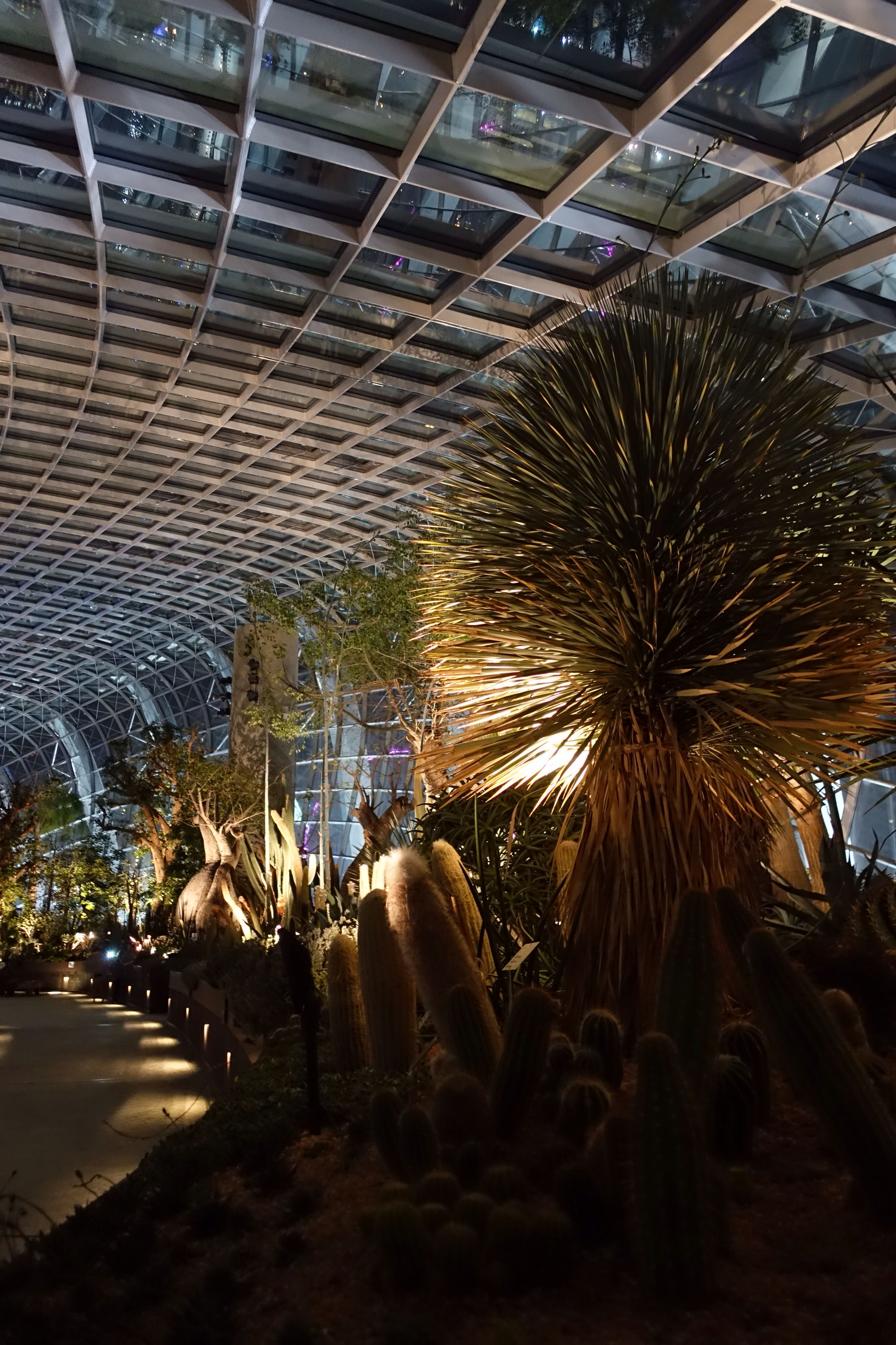 Flower Dome, one of the largest climate-controlled conservatories in ...