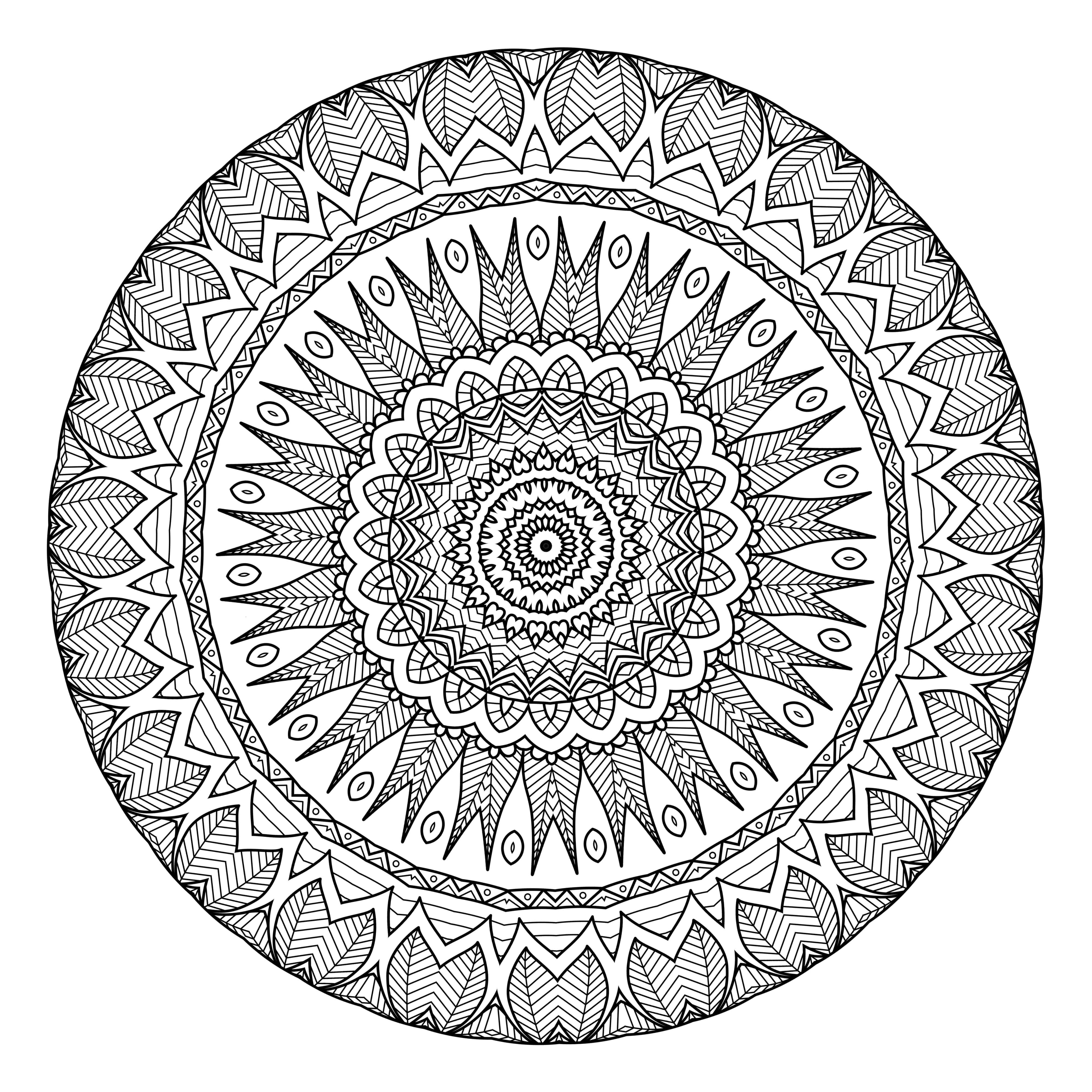 Lifestyle And Productivity The Maven Circle Mandala Coloring Pages Free Printable Coloring Pages Mandala Coloring Books