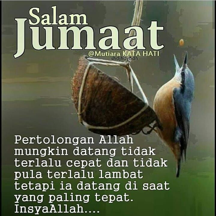 26 Salam Jumaat Quotes Ideas Salam Jumaat Quotes Islamic Quotes Quotes