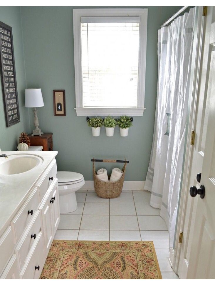 Pin By Celina Marquis On Second Home Pinterest Basements And Amazing Small Master Bathroom Pictures Painting