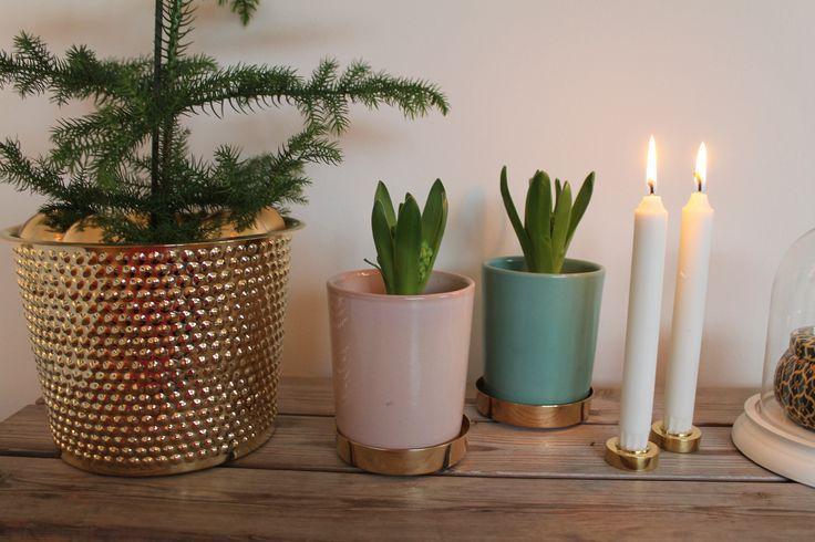 Bildresultat för svenskt tenn jul