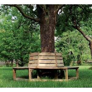 Banc En Bois Orlando Tour D Arbre Banc Jardin Banc Bois