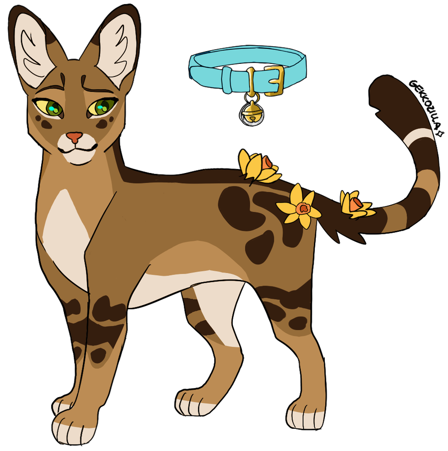 Frecklewish Skyclan By Gekkodesigns Warrior Cats