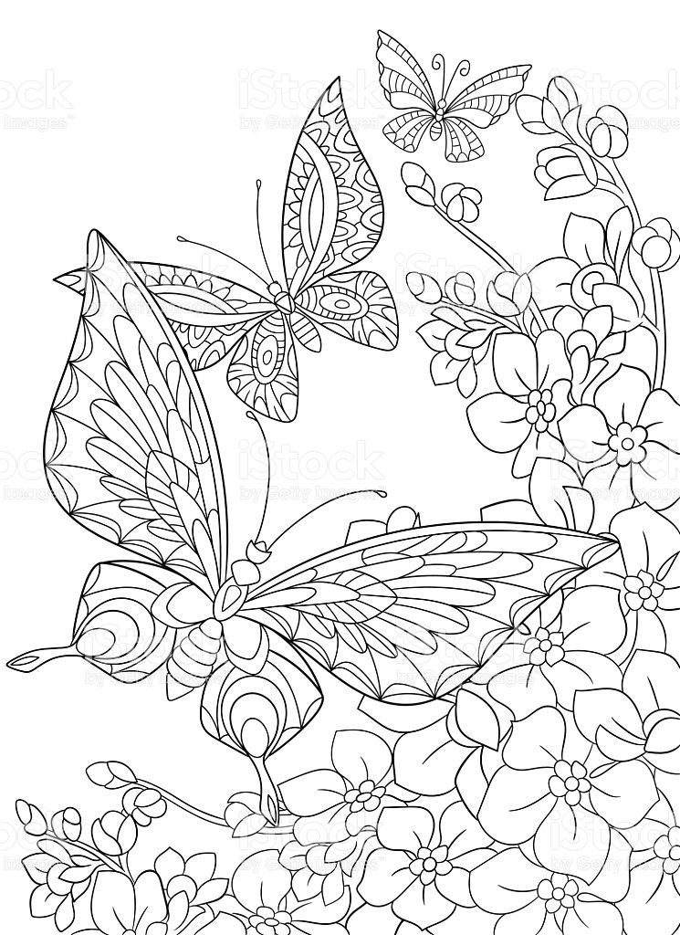 Stylized cartoon butterfly and sakura flower. Hand drawn
