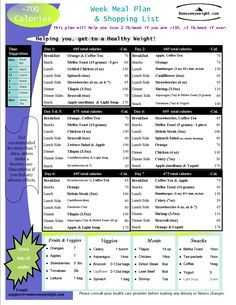 Daily meal plan lose weight fast photo 5