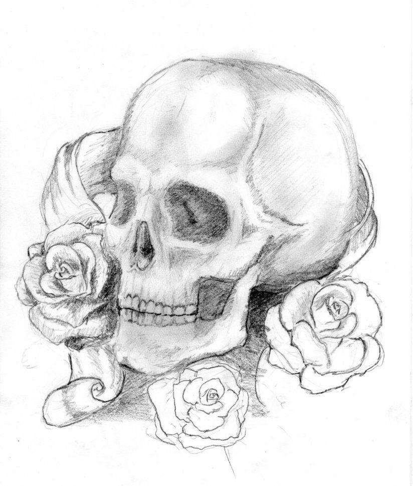 Картинки черепа с розой карандашом