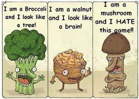 broccoli walnut mushroom joke google search misc pinterest