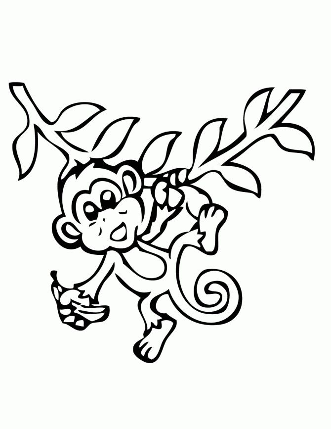 Monkey Drawing Monkey Coloring Pages Animal Coloring Pages