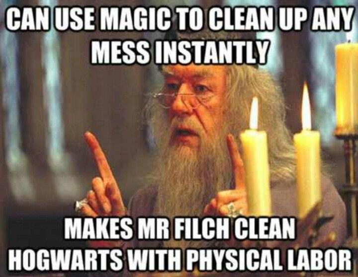 Poor Squib Leslie S Essay Harry Potter Funny Harry Potter Fan Harry Potter Memes