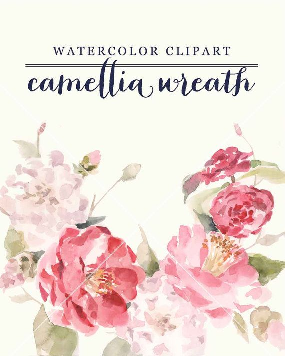 Camellia wreath watercolor clipart