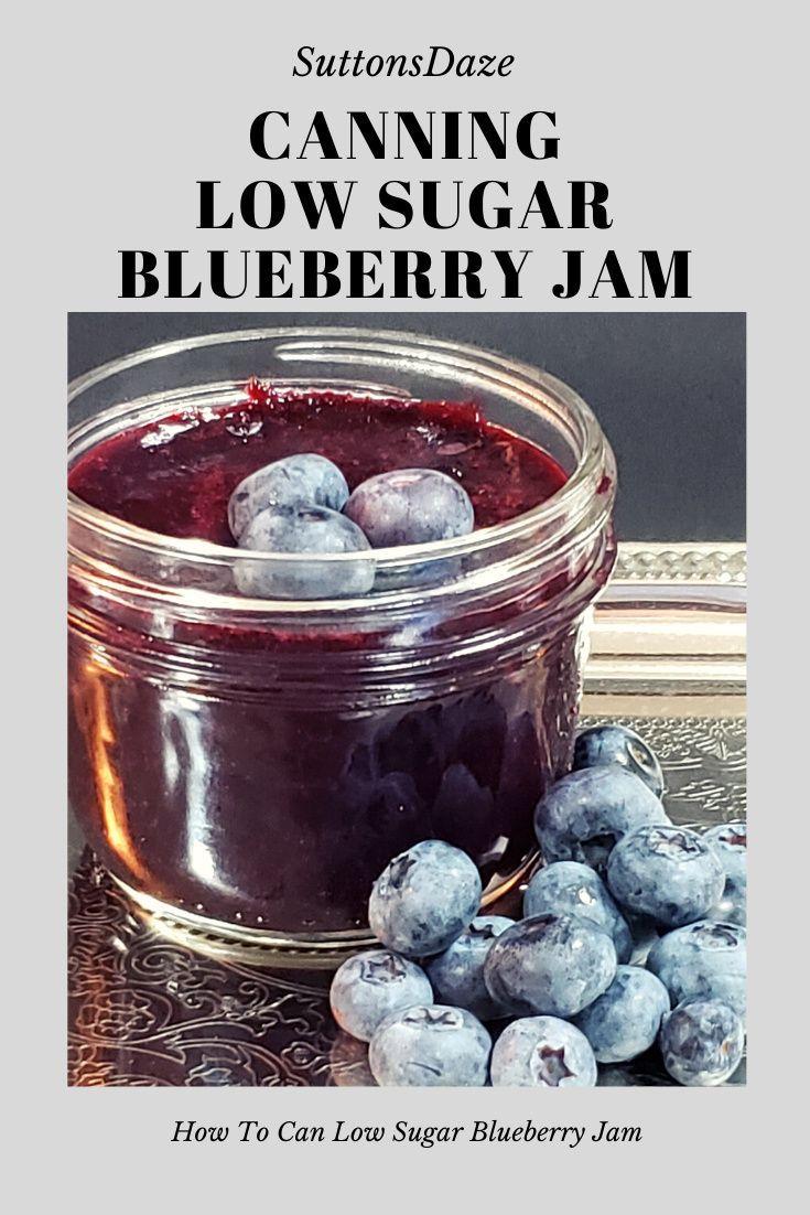 Park Art My WordPress Blog_Sugar Free Blueberry Syrup Canning Recipe