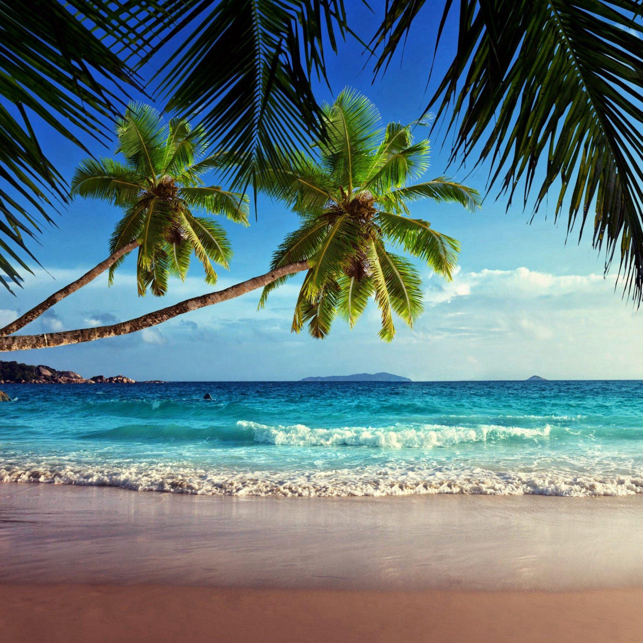 Beaches philipenes