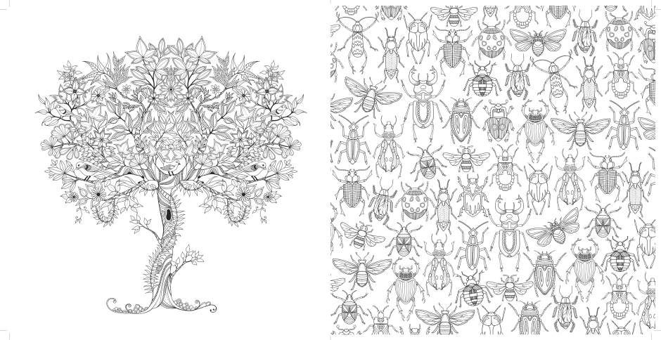 78 Images About Color On Pinterest Secret Garden Colouring Animal Kingdom And Pages Coloring Book Pdf Eassume