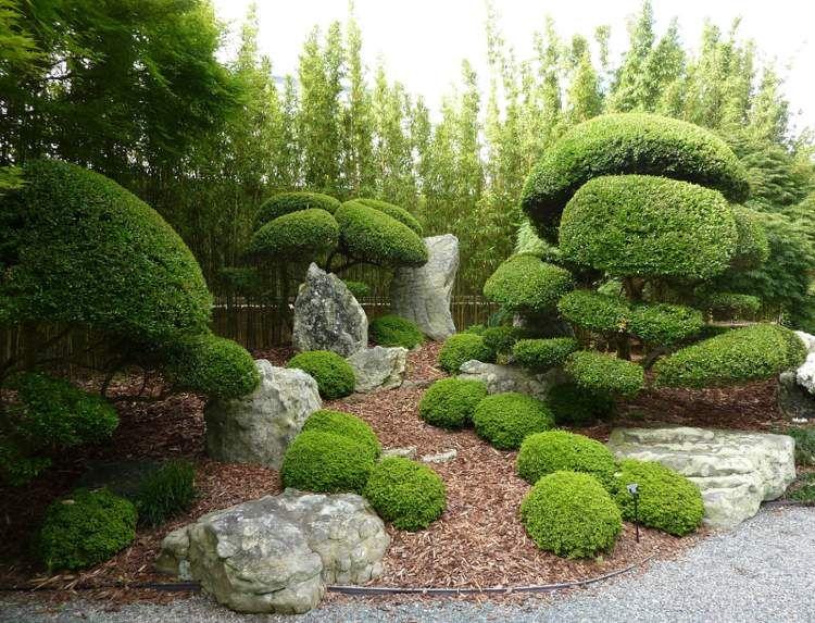 Traditioneller Japanischer Garten Gestaltung Japanischer Garten Garten Buchsbaum Garten