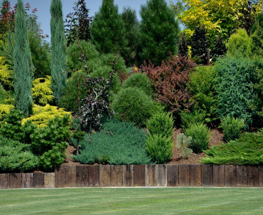 Skarpy w ogrodzie ogr d garden pinterest gardens - Jardin en pente douce amenagement saint etienne ...