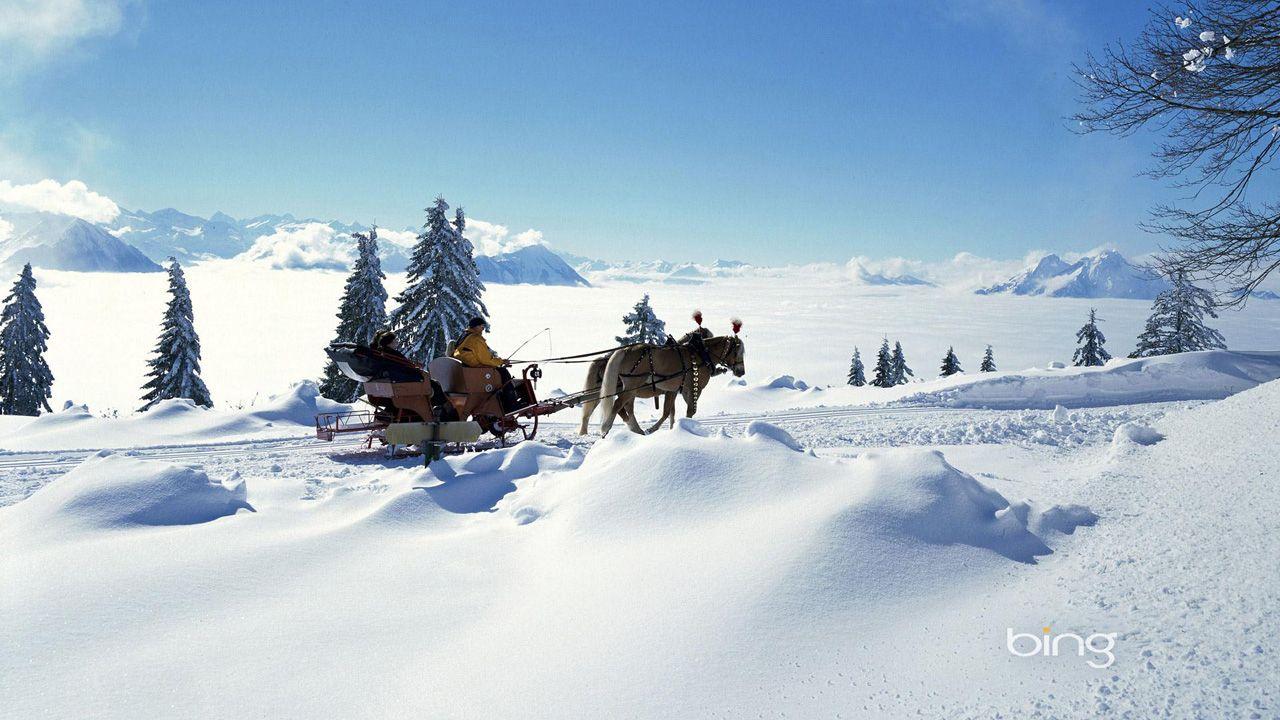 Beautiful Snow Scenery Carriage Wallpaper