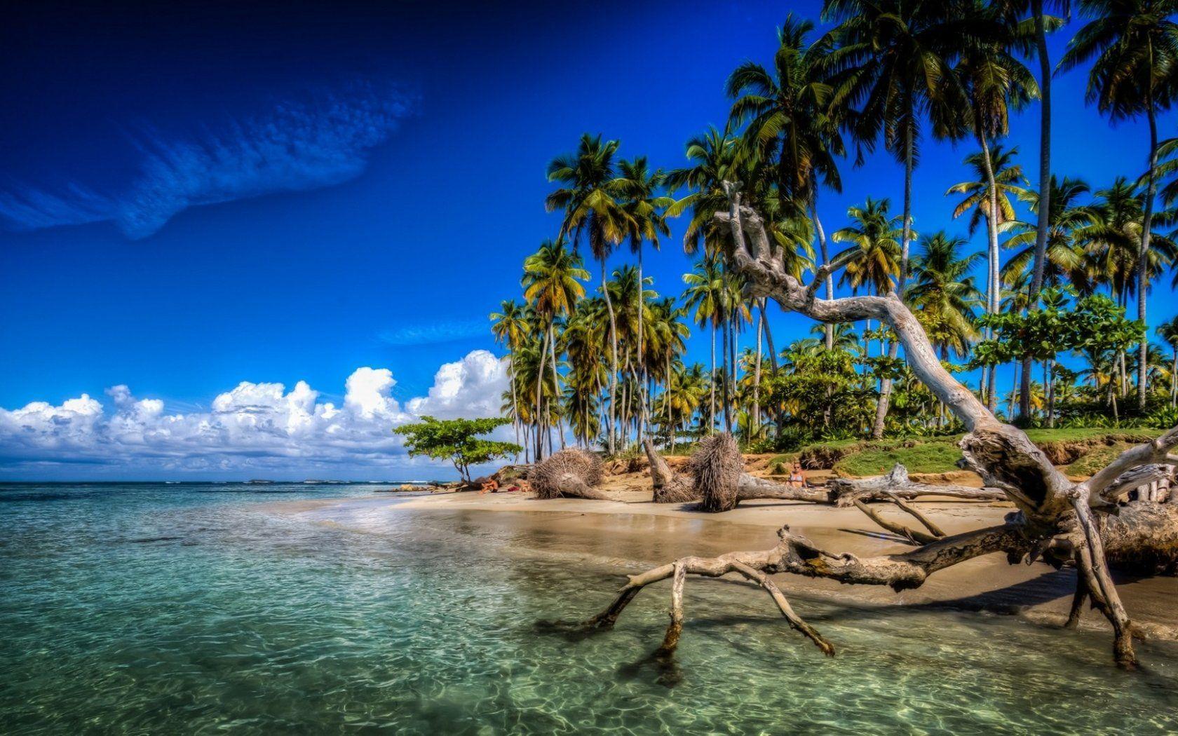Las Terrenas Samana Dominican Republic Caribbean