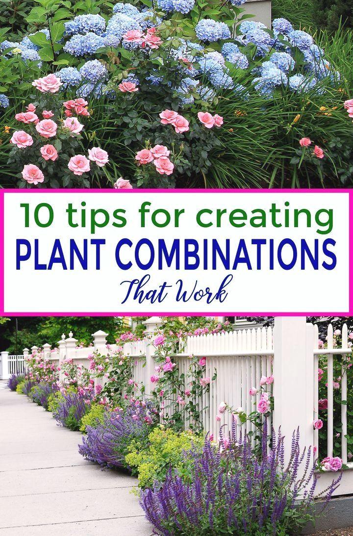 Pin On Gardening Landscaping