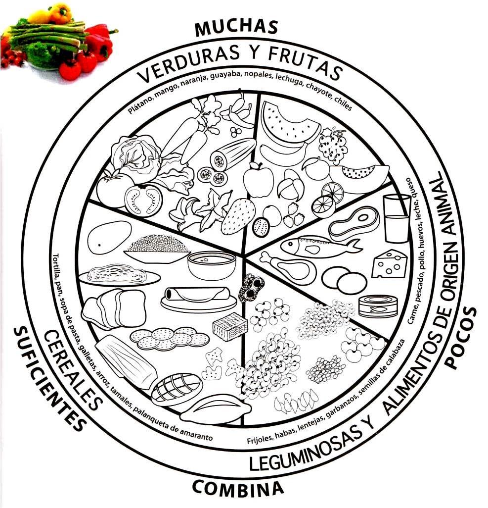 Educando y jugando: PLATO DEL BIEN COMER PARA COLOREAR | Dibujos ...