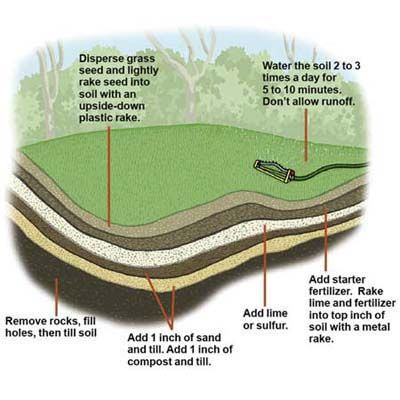 How To Seed A Lawn Lawn Care Reseeding Lawn Planting Grass