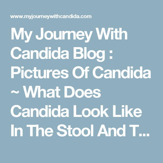 how to get rid of candida in stool