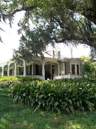 New Iberia Louisiana Attractions | ... - Jefferson Mansion - Picture of Rip Van Winkle Gardens, New Iberia