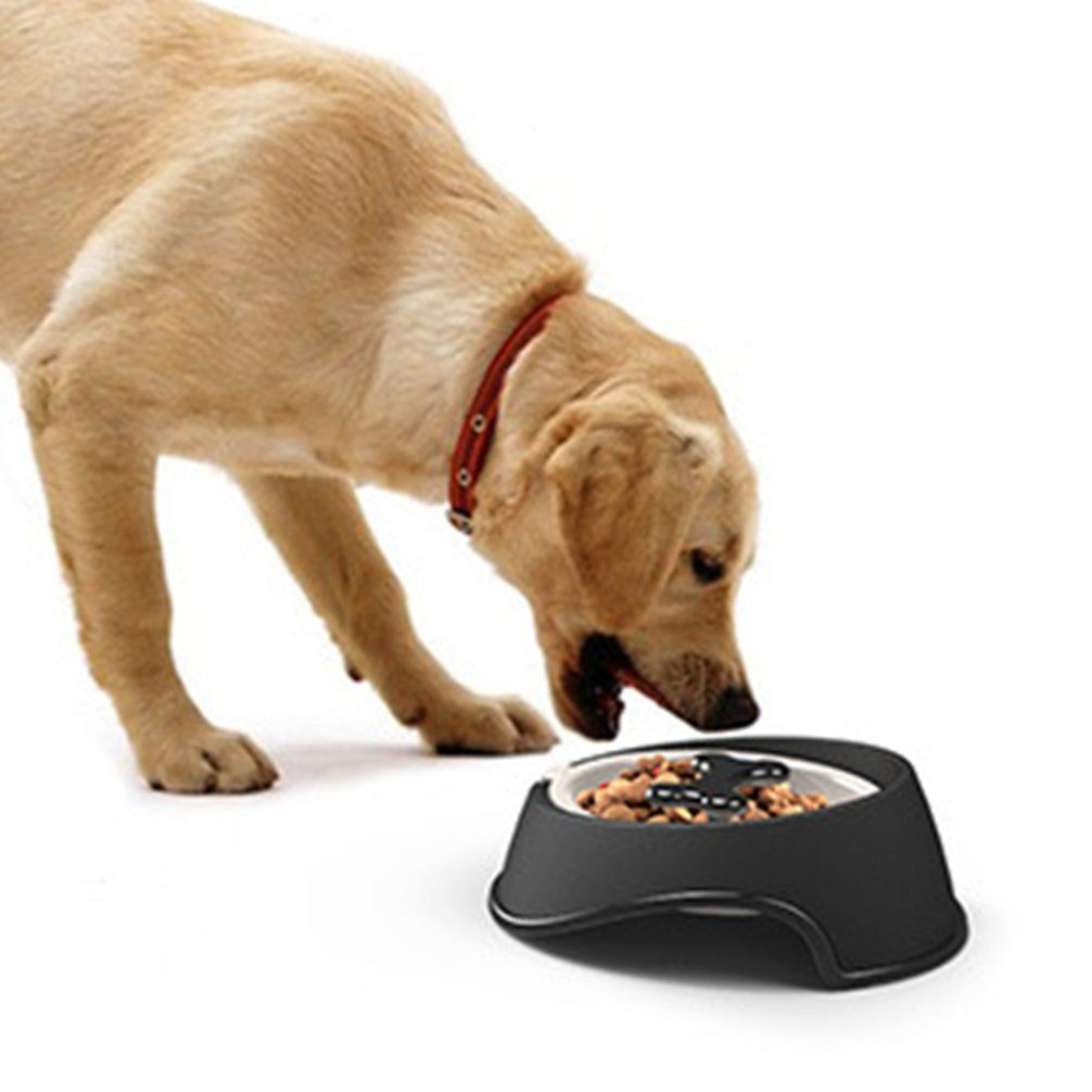 New Design Dog Slow Eating Bowl Fun Feeder Stop Eating Too Fast
