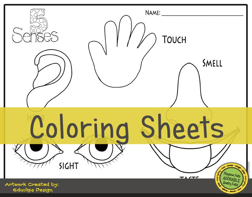 Our Five Senses Digi Download (With Images) Senses Preschool
