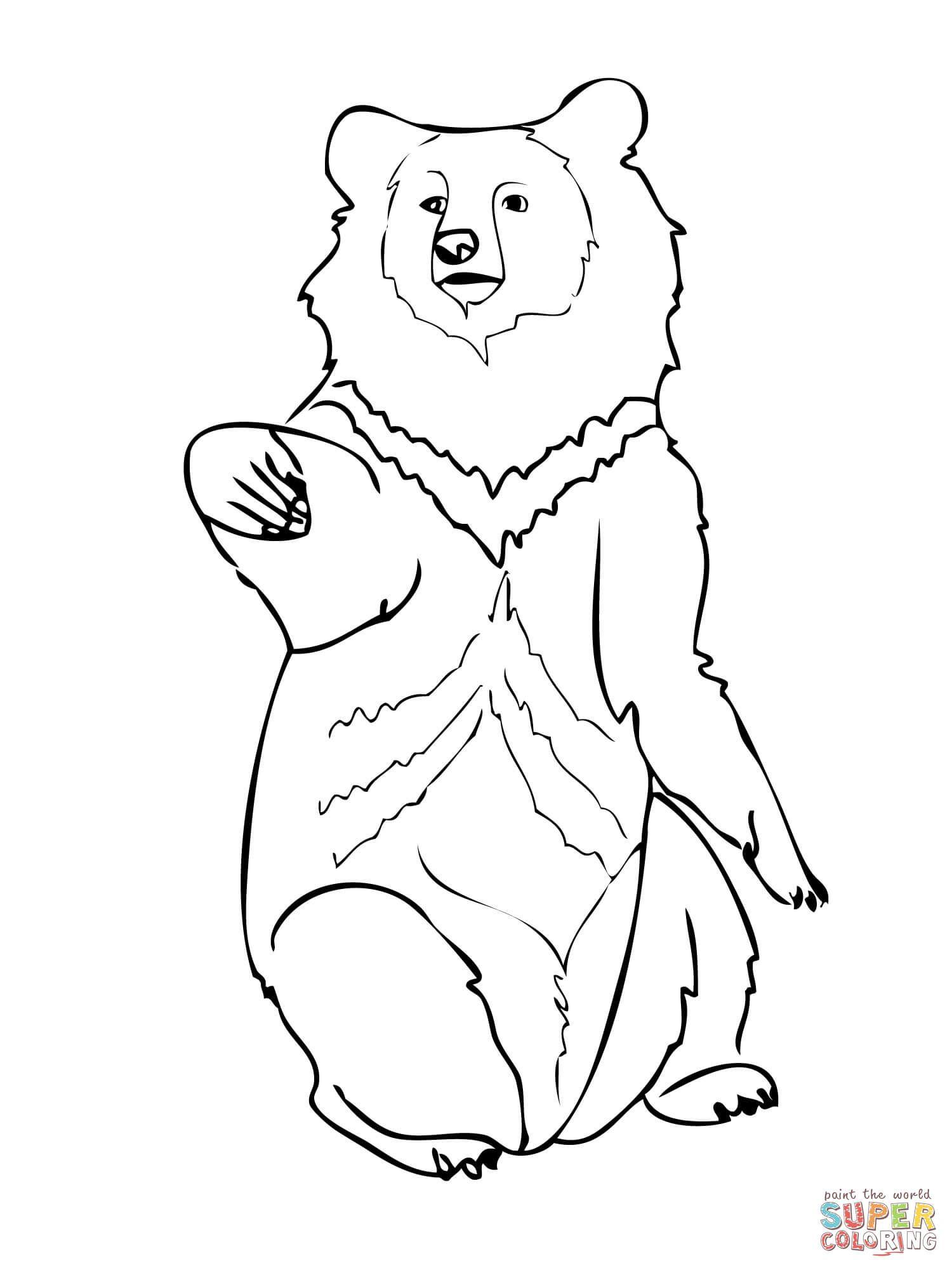 Asia Black Bear Super Coloring Berenstain Bears Coloring Pages Bear Coloring Page Bear Coloring