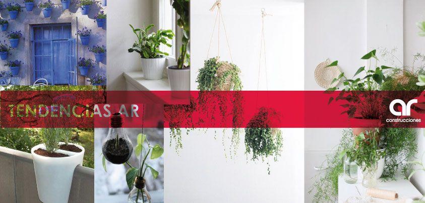 Plantas