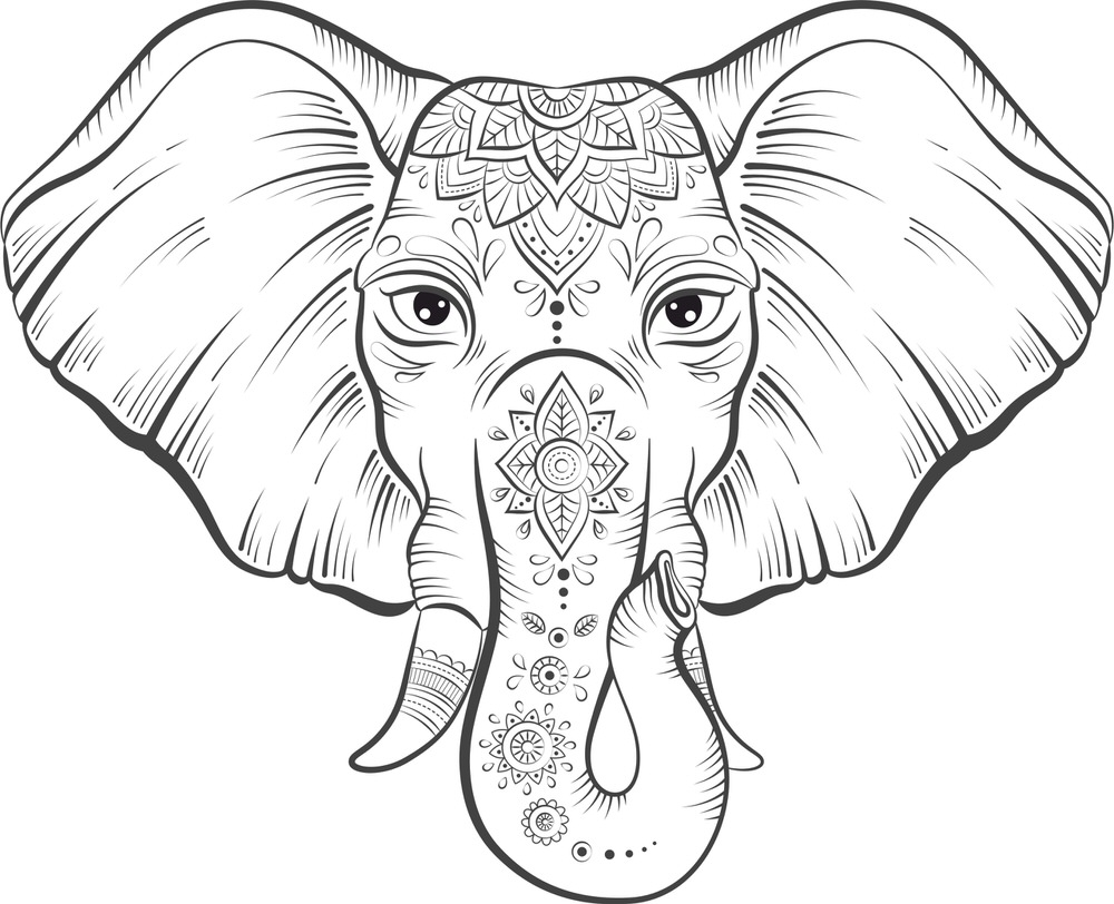 Elephant Lotus Vector Free Vector cdr Download 3axis.co