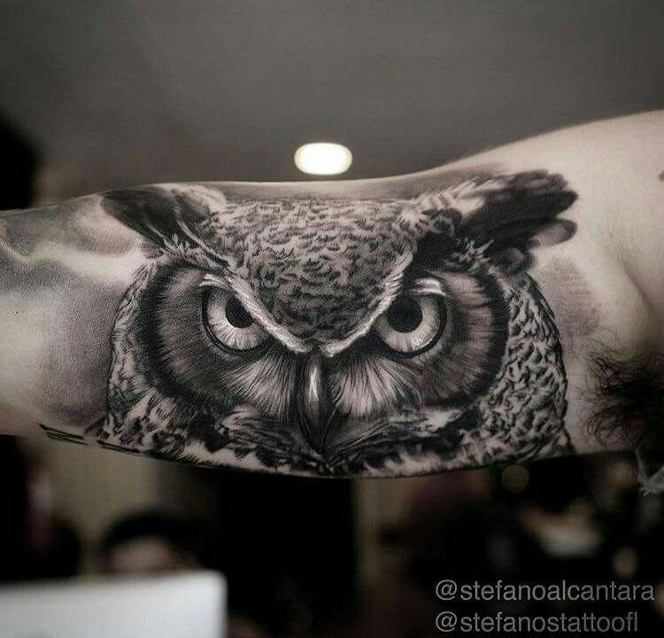 Pin By Dyson Birch On Tattoos Realistic Owl Tattoo Owl Tattoo