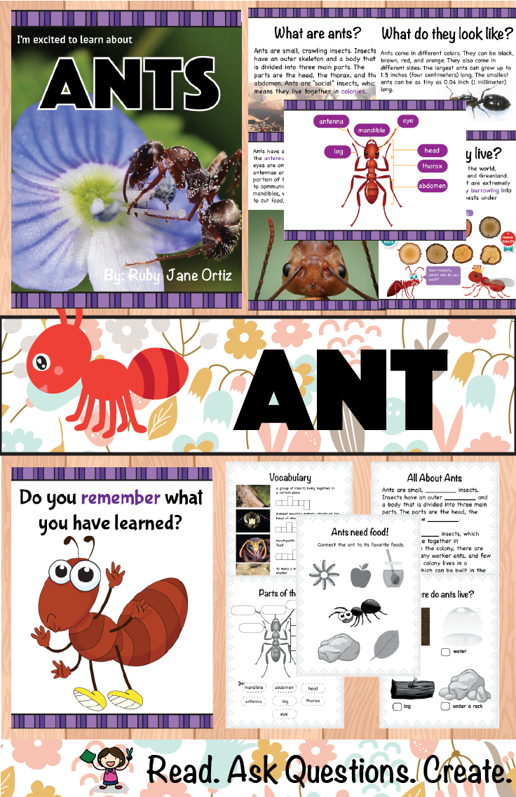Ant Bug And Insect Inquiry Based Learning Includes Ant Lapbook Making Guide Ant Craft Patt Expository Writing Graphic Organizers Literacy Center Activity [ 1136 x 736 Pixel ]