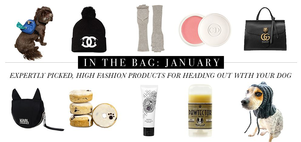 In the Bag: January